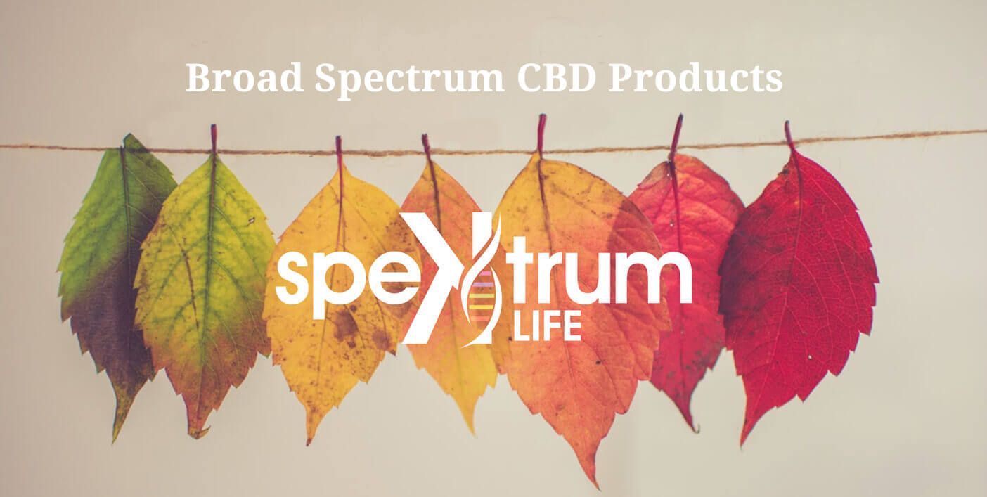 Broad Spectrum CBD Products Fall
